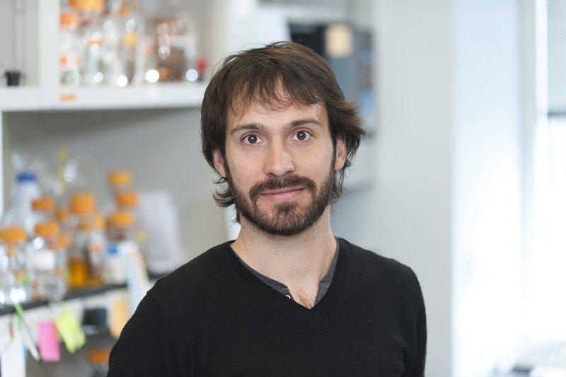 Axel Delamarre