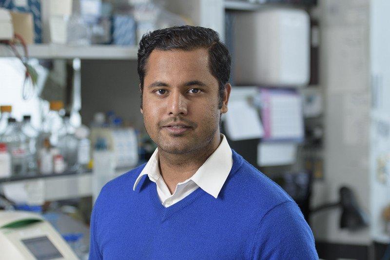 Darpan Medhi, PhD
