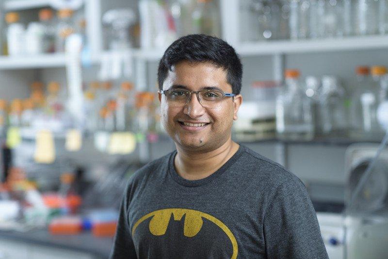 Ankan Banerjee