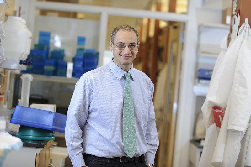 MSK physician-scientist Omar Abdel-Wahab