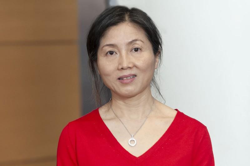 Hongyan Li