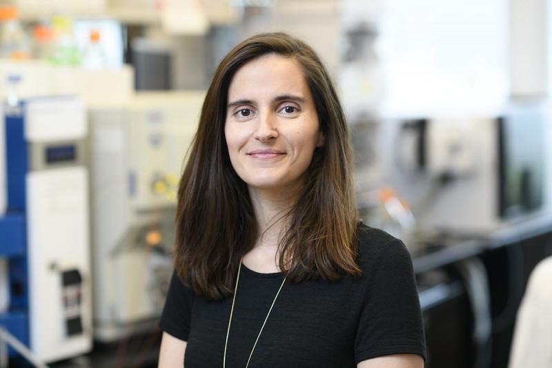 Sara Nunes Violante, PhD