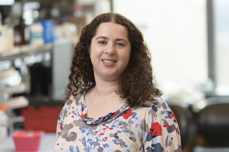 Ela Markovsky, PhD