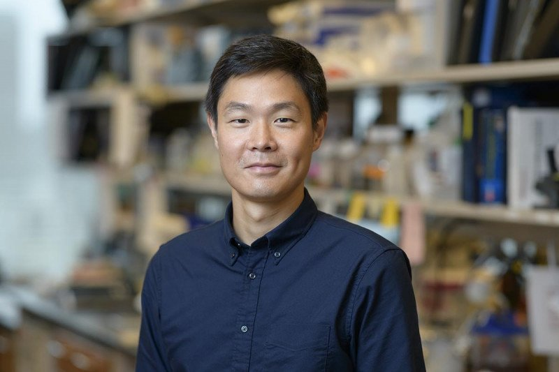 Jonathan Sia, Research Fellow