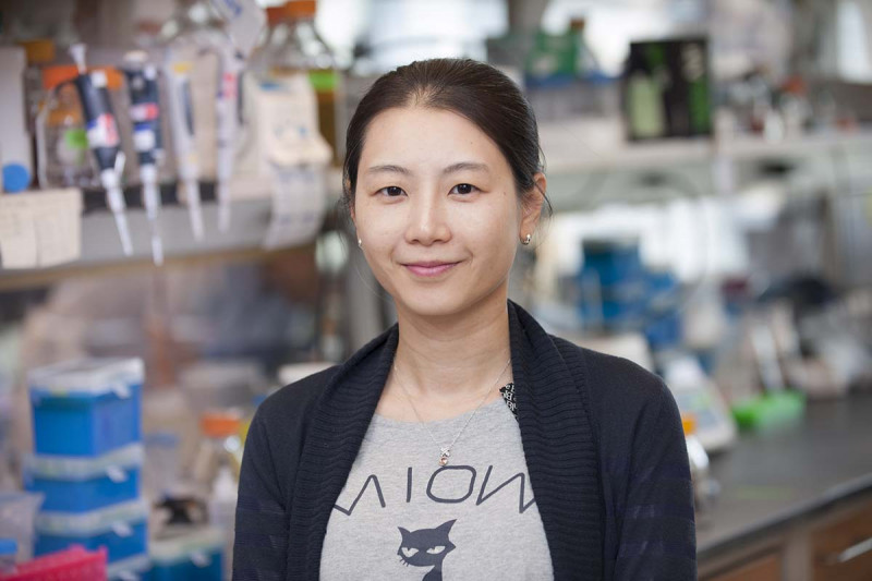 Kim Huensuk, Research Fellow
