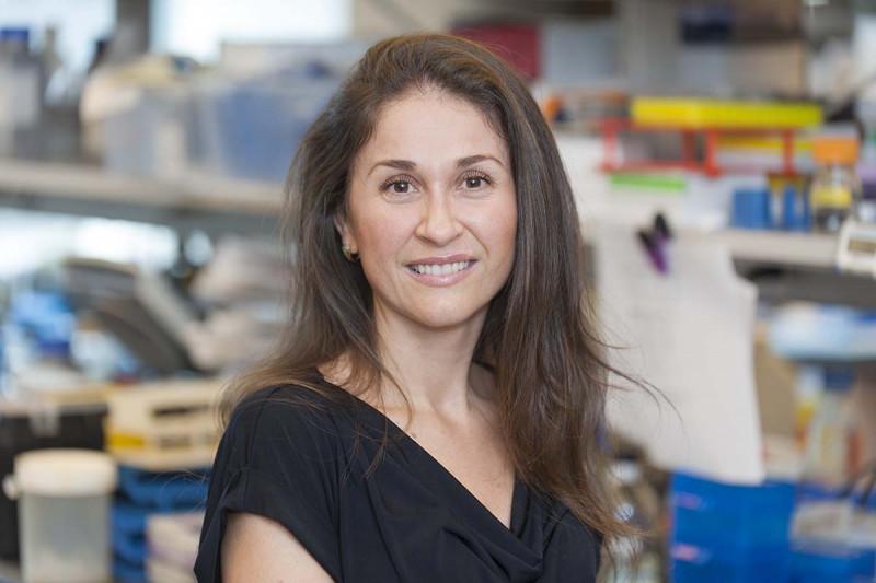 Luisa Escobar Hoyos, Research Fellow