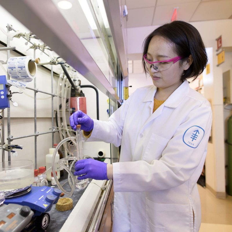 A postdoctoral fellow conducts an experiment in a chemical biology lab