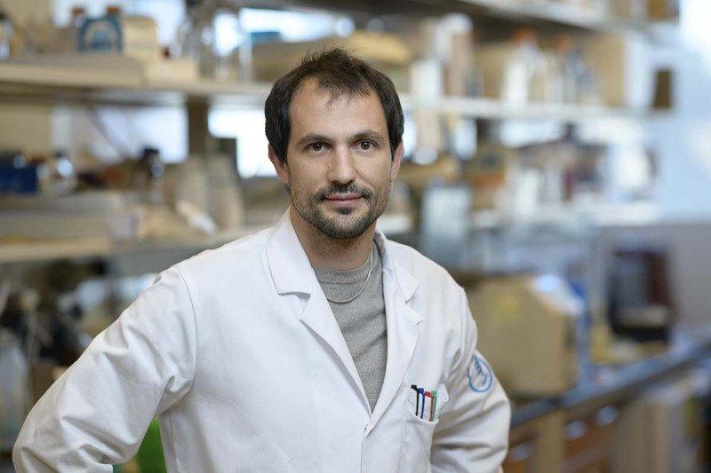 Riccardo Mezzadra