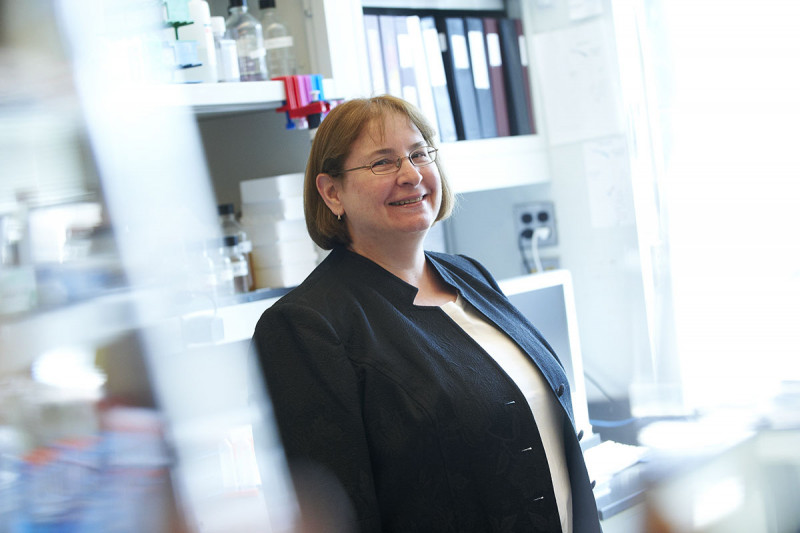 Maria Jasin, PhD, 2019 Shaw Prize Winner