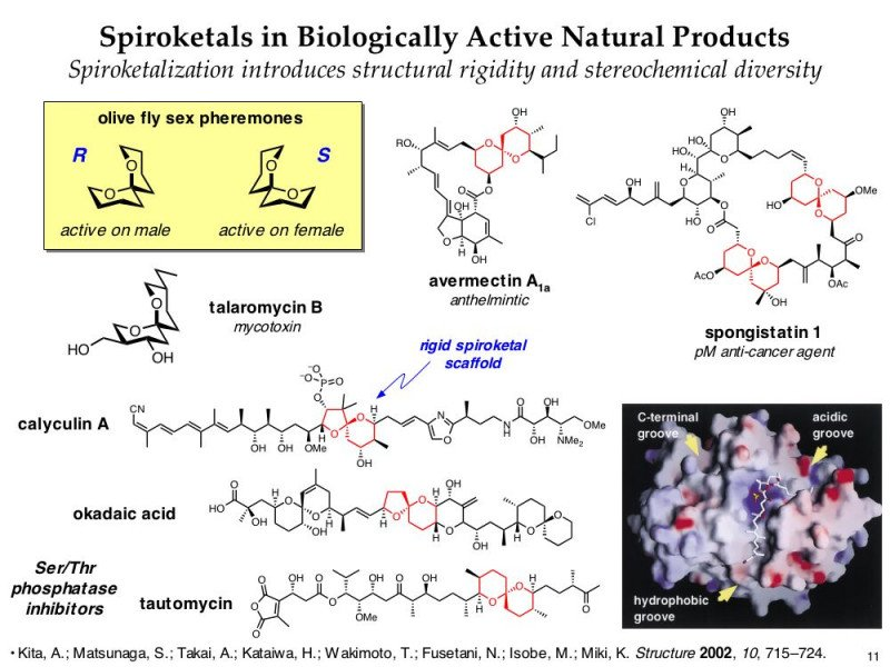diversity oriented synthesis, rational drug design, and chemical biology research