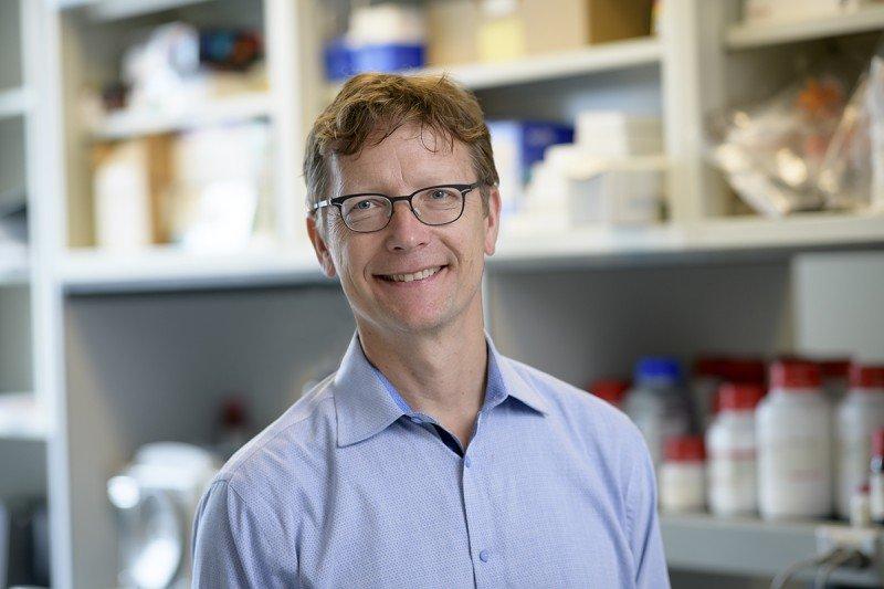 Ronald C. Hendrickson, PhD