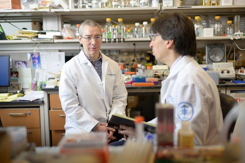MIchael Glickman lab