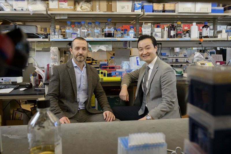 Dr. Scaltriti and Dr. Li work closely together in the lab and clinic on developing novel HER2-targeted therapies for people with cancer.