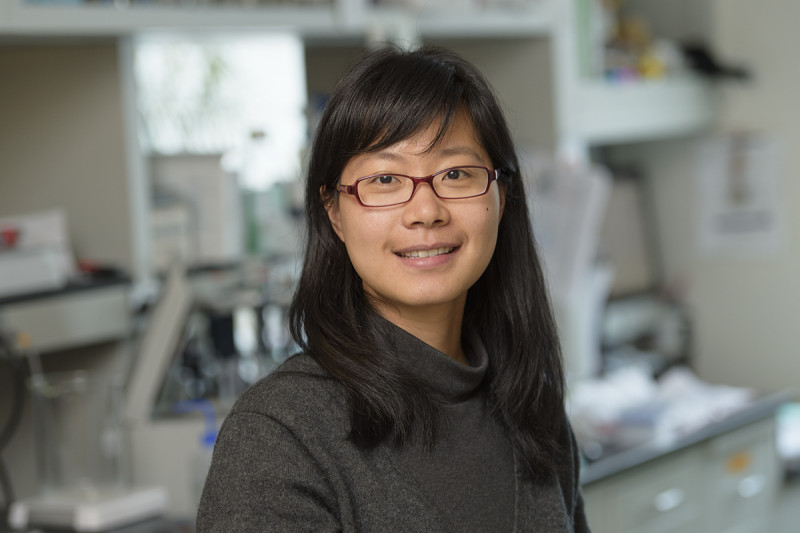 Hongyun Wang, PhD