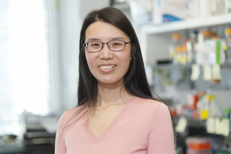 Zhaohui Yang, Graduate Student