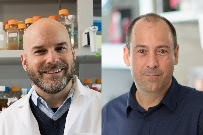Scott Keeney, PhD & Christopher Lima, PhD