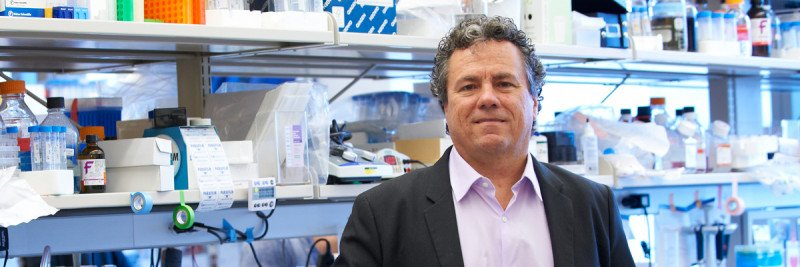 At Work: Cancer Biology and Genetics Program Chair Scott Lowe