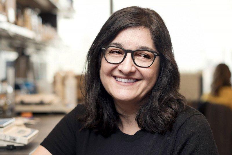 Christine Mayr, MD, PhD