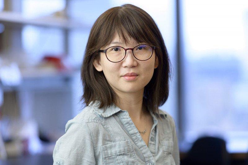 Lin-Chun Chang