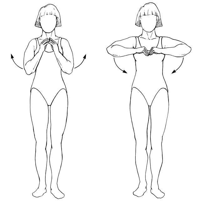Chest Expander Exercise Chart Pdf -