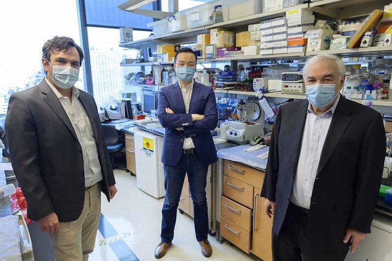Piro Lito, Bob Li, and Neal Rosen in the lab