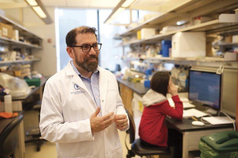 Luis A. Diaz,医学博士,MSK 斯隆实体瘤肿瘤学部门负责人