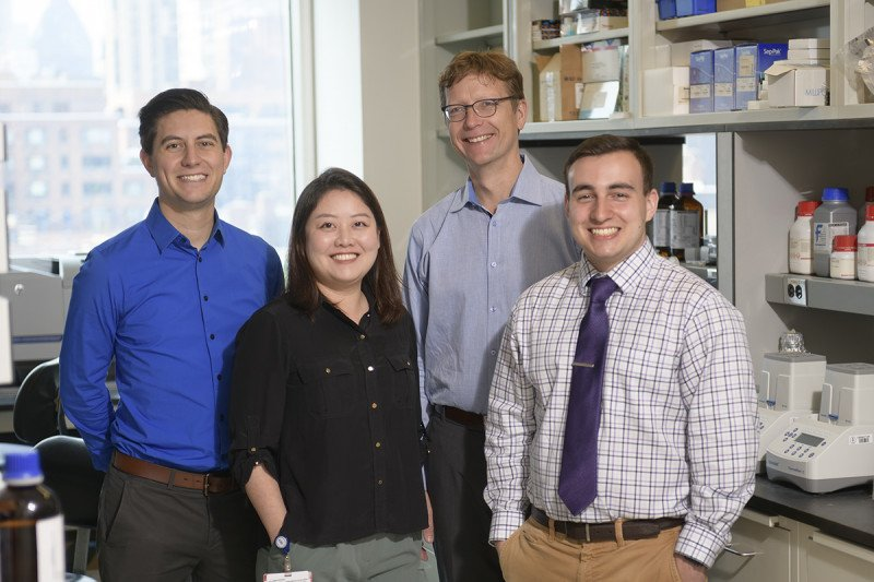 Hendrickson Lab Group