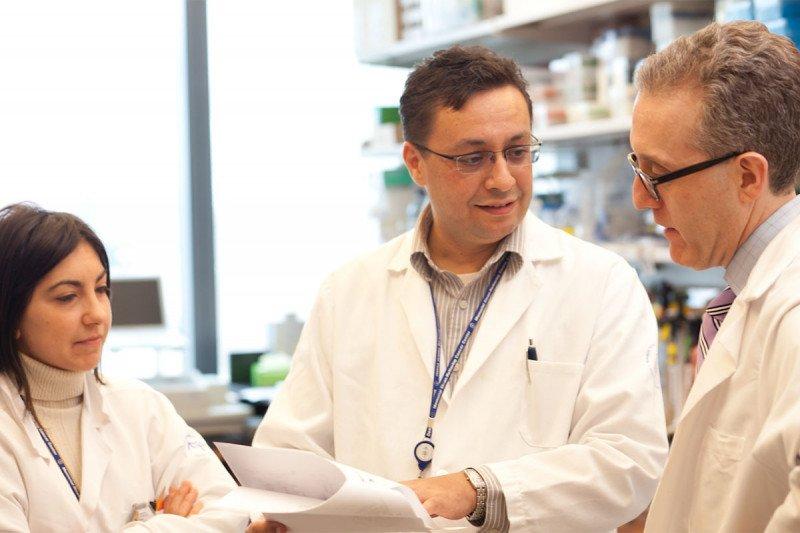 Roberta Zappasodi, Taha Merghoub, and Jedd Wolchok. Photo credit: Flynn Larsen for Ludwig Cancer Research