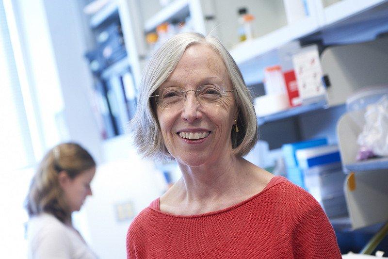 Developmental biologist Kathryn Anderson
