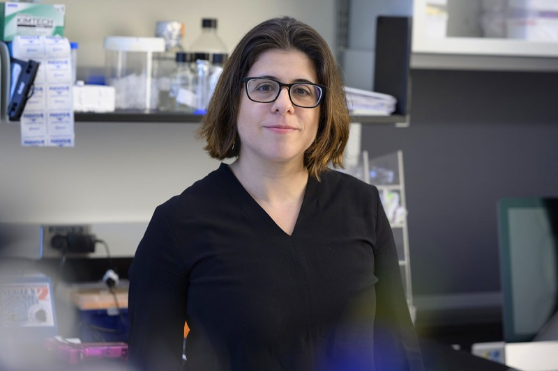 MSK molecular biologist Agnel Sfeir