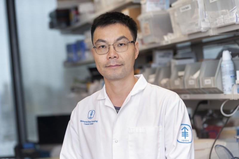 Biran Wang, PhD