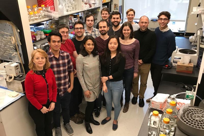 Lima Lab 2018