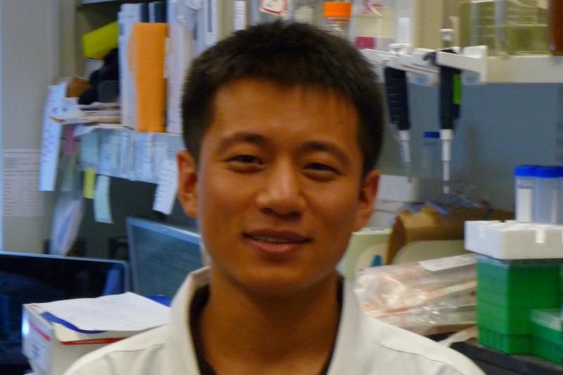 Gao Pu
