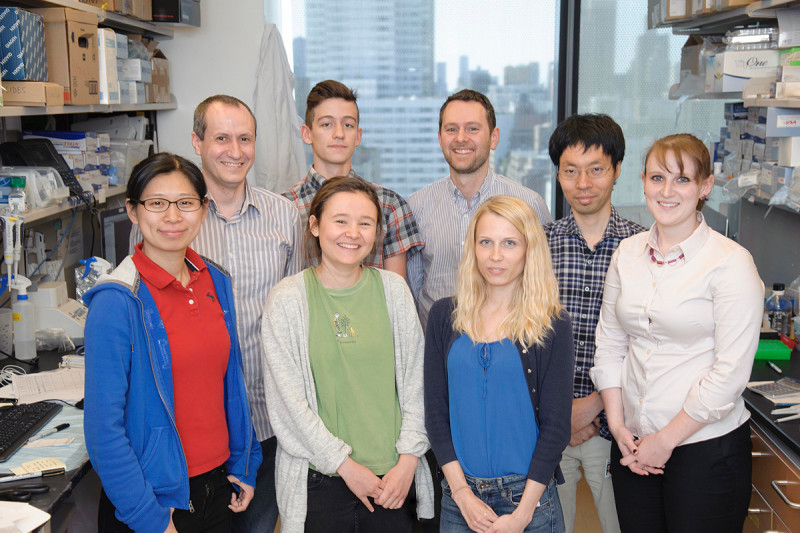 The Alan Hanash Lab