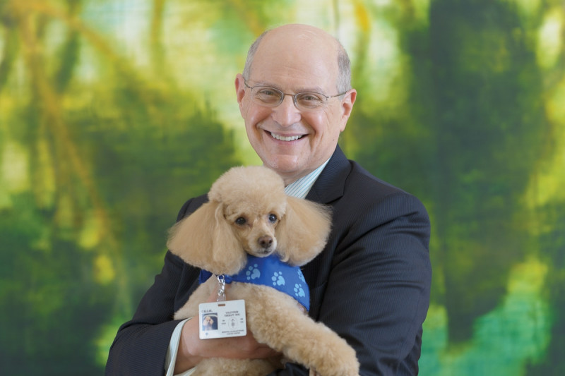 Picture perfect: Callie with her new human friend, Deputy-Physician-in-Chief for Breast Cancer Programs Larry Norton.