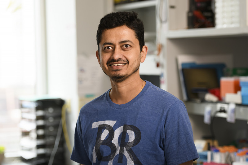 Santosh Narayan, Ph.D.