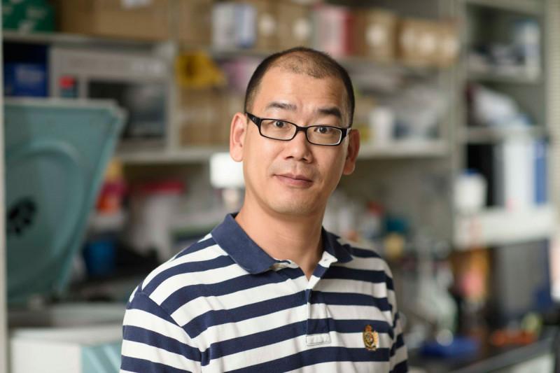 Zeguo Zhao