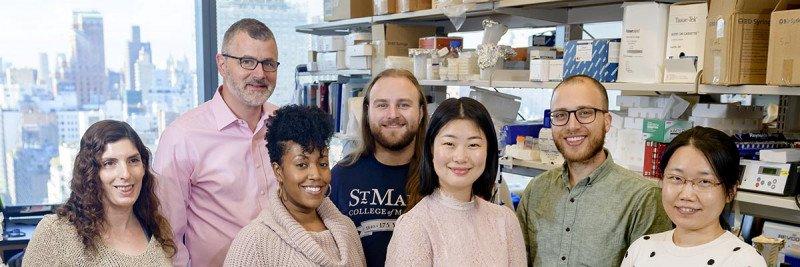 Tobias Hohl Lab Group