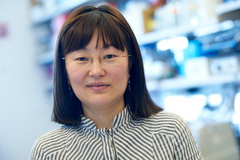 Qiaoran (Karen) Xi