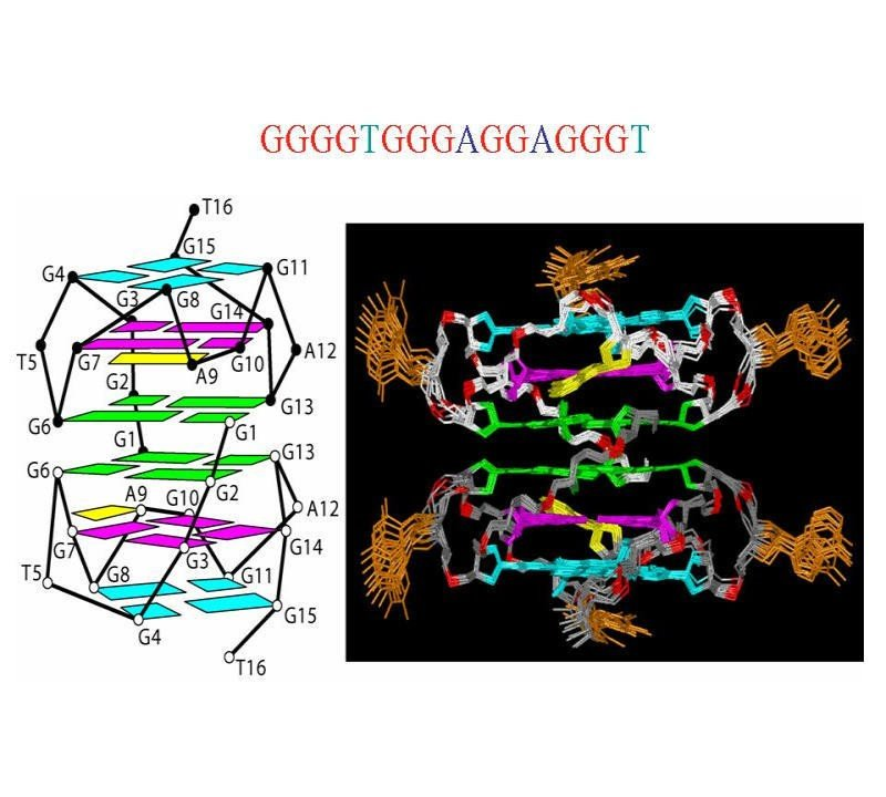 G-Quadruplex Inhibitors of HIV-1 Integrase