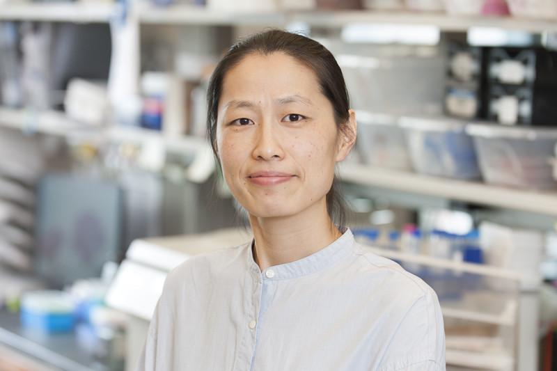 Nawei Zhang, MD
