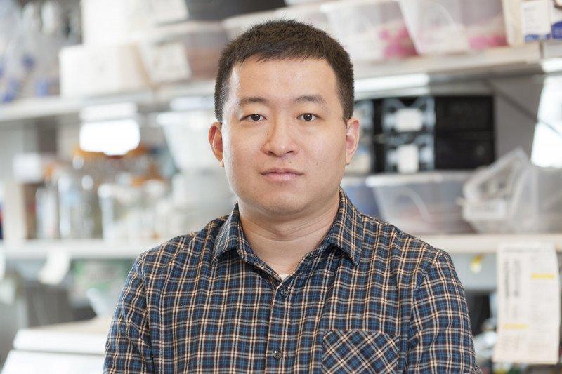 Shi Chen, BS