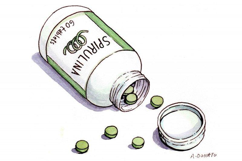 algae used in medicine