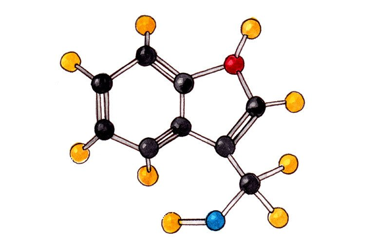 Indole-3-Carbinol