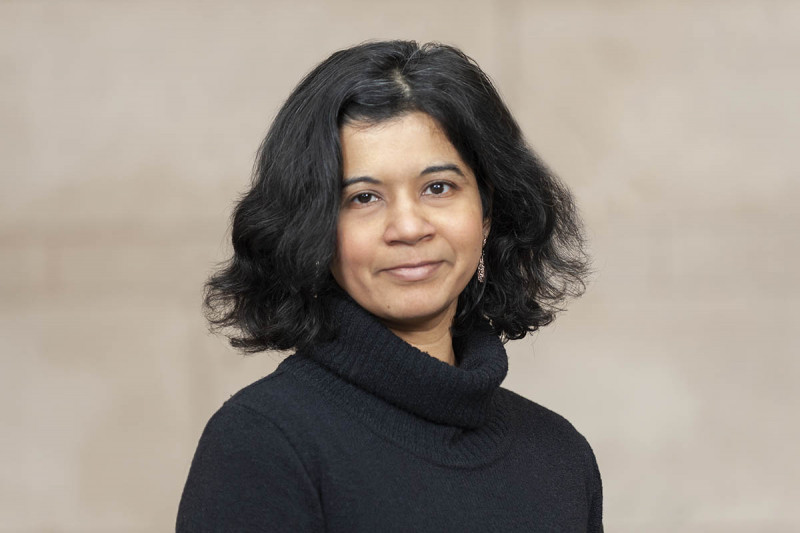 Pictured: Harini Veeraraghavan