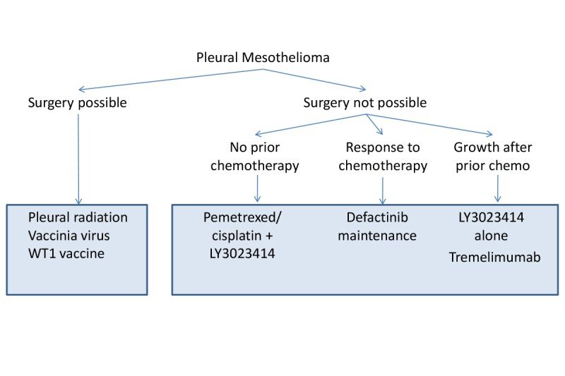 Memorial Sloan Kettering clinical trial flowchart for patients with pleural mesothelioma