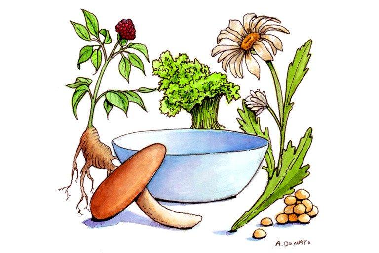 Sun Farms Vegetable Soup