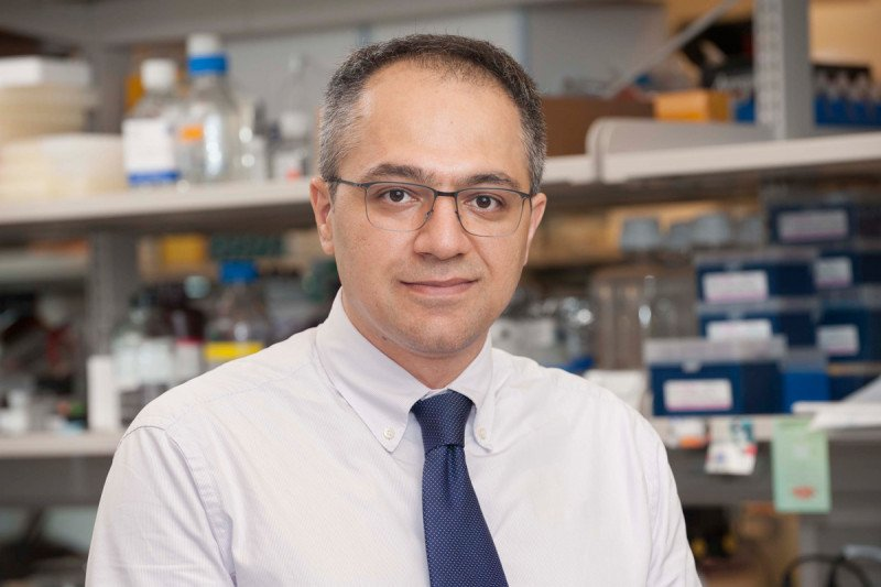 Pedram Razavi, MD, PhD
