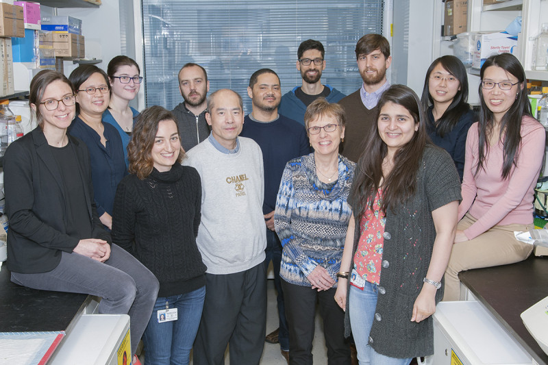 The Alexandra Joyner Lab