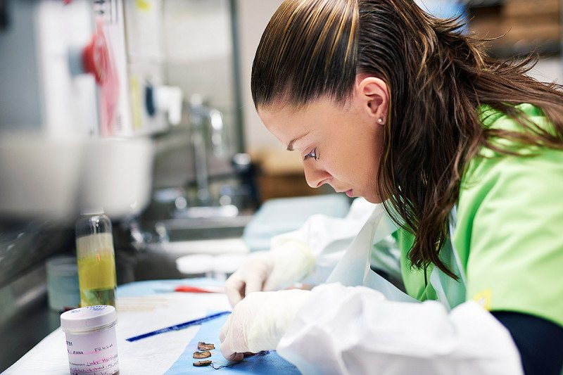 Pathology assistant Annabel Canhao analyses tissue from a biopsy.